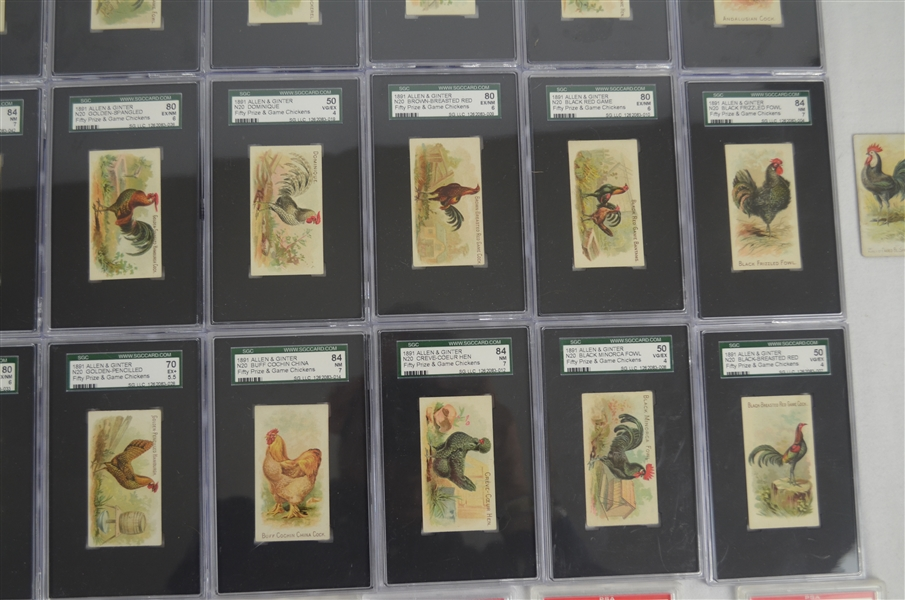 1891 N20 Allen & Ginter Prize & Game Chickens Complete Graded Card Set