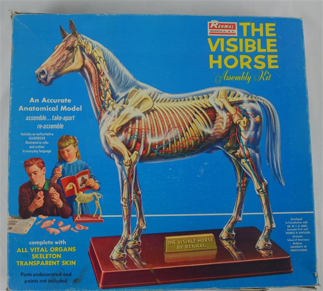 Vintage 1961 Renwal The Visible Horse Assembly Kit