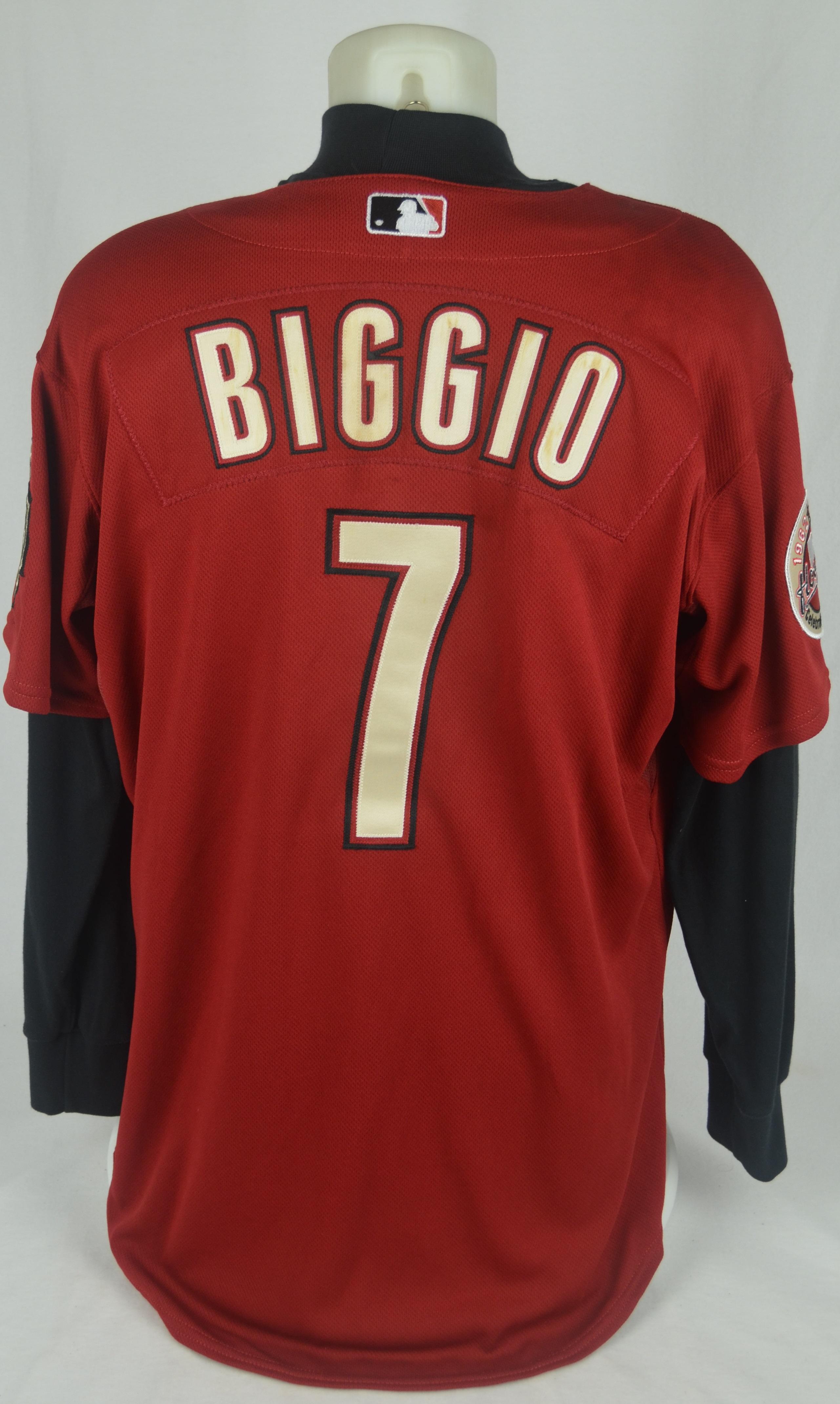 pretty nice cb5e9 314b3 Lot Detail - Craig Biggio 2006 Houston Astros Game Used ...