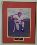 Pete Rose Autographed Framed & Ty Cobb Photo