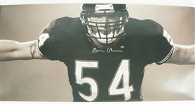 "Brian Urlacher Autographed 20x72 ""Wings"" Poster"